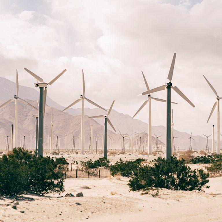 Tuulivoimaloita vihreiden kasvien keskellä