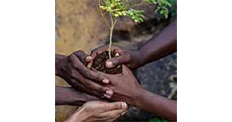 Harvesting for Good East Africa