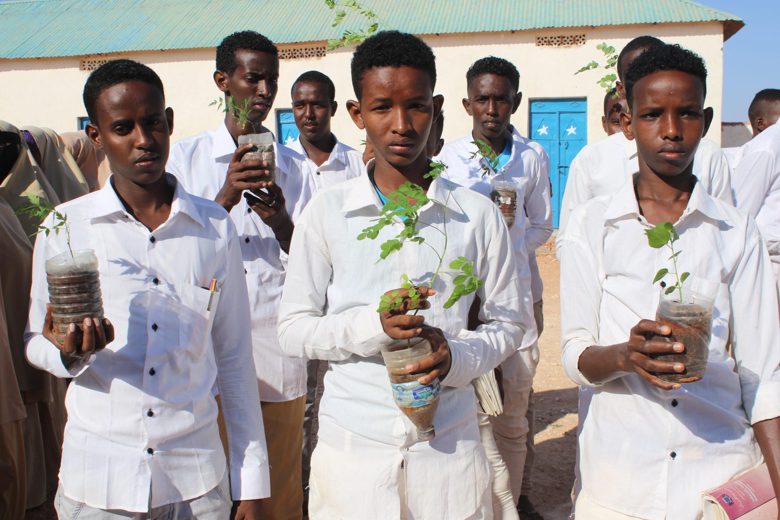 Koululaiset pitävät käsissään istutettavia taimia.