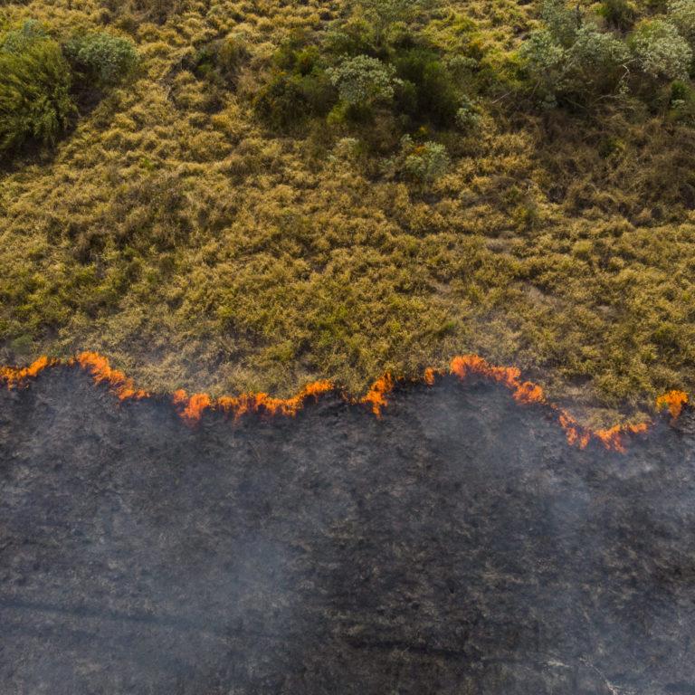 Forest fire in Brazil